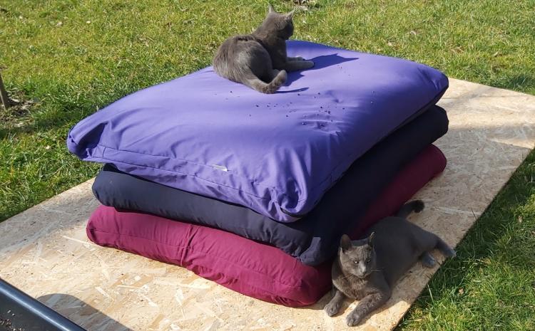 jastuk za pse i mačke od heljde