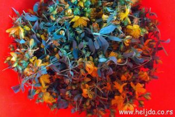 kantarion cvet