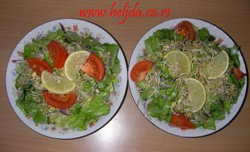 Zelena salata sa svežim klicama